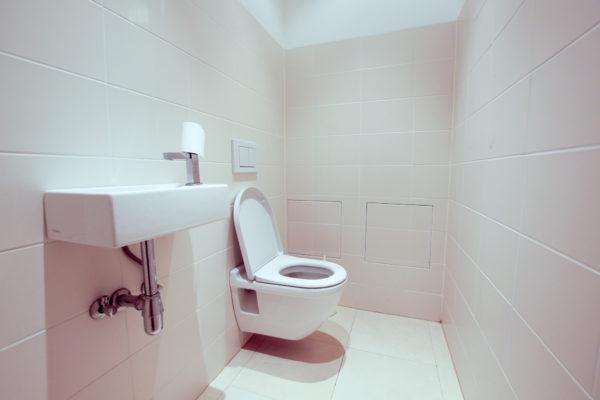 leopold-vanderkelenstraat-10-voorbeeld-toilet